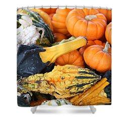 Shower Curtain featuring the photograph Mini Pumpkins And Gourds by Cynthia Guinn