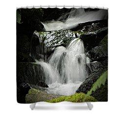 Mini Waterfall 2 Shower Curtain