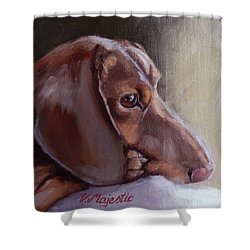 Miniature Doxin Daydreaming- Dachshund Pet Portrait Shower Curtain