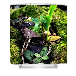 Shower Curtain featuring the photograph Miniature Garden by Jim Thompson