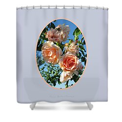 Shower Curtain featuring the photograph Blue Skies And Roses by Brooks Garten Hauschild