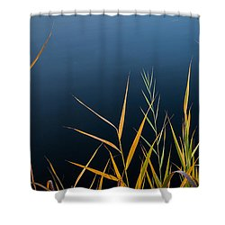 Minimalist Me Shower Curtain by Glenn DiPaola
