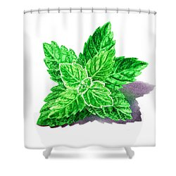 Shower Curtain featuring the painting Mint Leaves by Irina Sztukowski