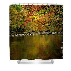 Shower Curtain featuring the photograph Mirror Fall Stream In The Mountains by Debbie Green
