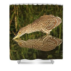 Mirror Mirror On The Wall Who Is The Fairest Heron Of All Shower Curtain