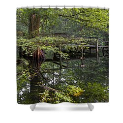 Mirror To The Soul Shower Curtain by Debra and Dave Vanderlaan