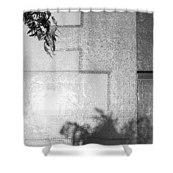 Mirrors 2009 1 Of 1 Shower Curtain