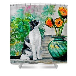 Da129 Miss Kitty Daniel Adams Shower Curtain