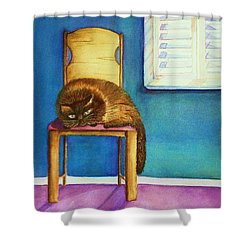 Kitty's Nap Shower Curtain