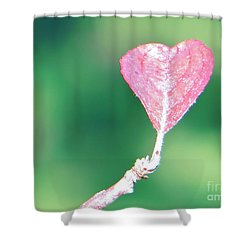 Miss Lonely Heart Shower Curtain
