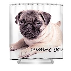 Missing You... Shower Curtain by Edward Fielding