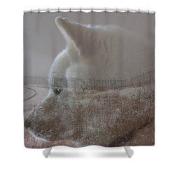 Shower Curtain featuring the digital art Missing You  by Stuart Turnbull