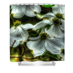 Mississippi Dogwood Shower Curtain