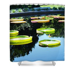Missouri Botanical Garden Giant Lily Pads Shower Curtain by Luther Fine Art