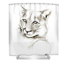 Missouri Mountain Lion II Shower Curtain by Kip DeVore