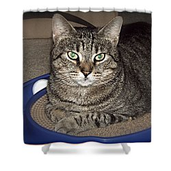 Missy 5 Shower Curtain