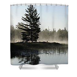 Mist And Silhouette Shower Curtain by Larry Ricker