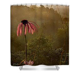 Mist On The Glade Shower Curtain