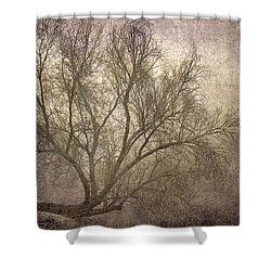 Mist Tree Shower Curtain by Guido Montanes Castillo