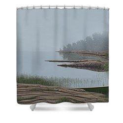 Mistified Shower Curtain by Kenneth M  Kirsch