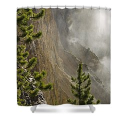 Misty Canyon  Shower Curtain