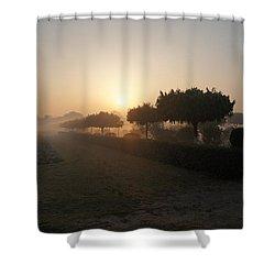 Misty Garden In The Morning Light Shower Curtain