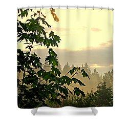 Misty Shower Curtain
