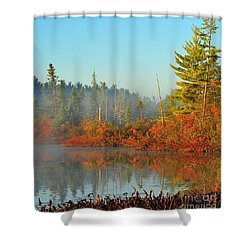 Misty Marsh Shower Curtain by Terri Gostola