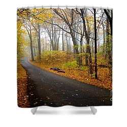 Misty Minnesota Mile Shower Curtain