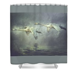 Misty Moon Shadows Shower Curtain by Brian Tarr