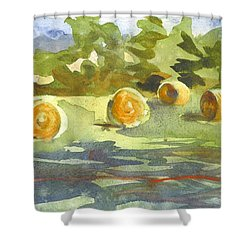 Misty Morning Gold Shower Curtain by Kip DeVore