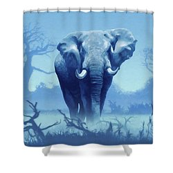 Misty Morning In The Tsavo Shower Curtain