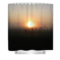 Shower Curtain featuring the photograph Misty Morning by James Petersen