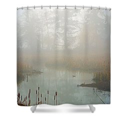 Shower Curtain featuring the photograph Misty Morning by Jordan Blackstone