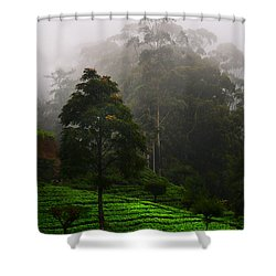 Misty Tea Plantations In Nuwara Eliya  Shower Curtain by Jenny Rainbow