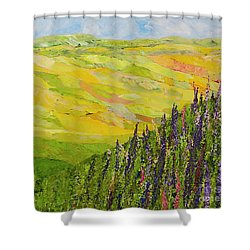 Misty Valley Shower Curtain by Allan P Friedlander