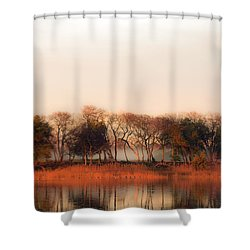 Misty Winter's Morning Shower Curtain
