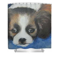 Mitzy Shower Curtain