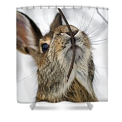 Mmm.. I Like Twiggy... Shower Curtain