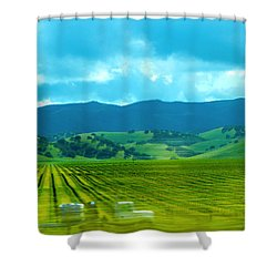 Mobile Transport Shower Curtain