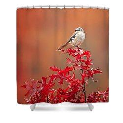 Mockingbird Autumn Square Shower Curtain