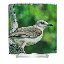 Mockingbird Pose Shower Curtain by Deborah Benoit