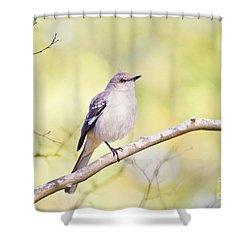 Mockingbird Shower Curtain by Scott Pellegrin