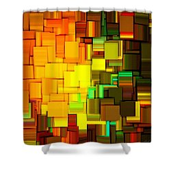Modern Abstract IIi Shower Curtain by Lourry Legarde