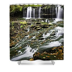 Mohawk Falls 1 Shower Curtain