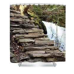 Mohawk Falls Steps Shower Curtain by Patti Whitten