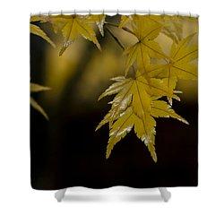 Moist Yellow Shower Curtain