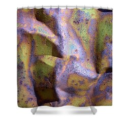 Mojave Rust Shower Curtain