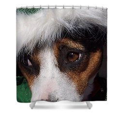 Mojo's New Holiday Coat Shower Curtain