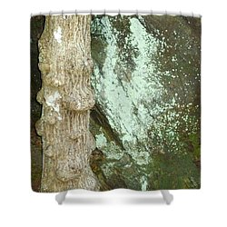 Shower Curtain featuring the photograph Mold On Rock by Pete Trenholm